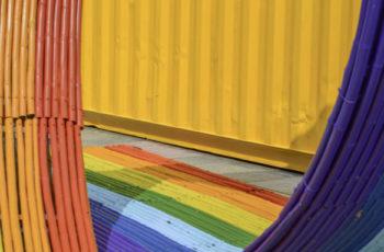 Programme de la formation continue «Développer un milieu de travail inclusif: management de la diversité et droits LGBT »